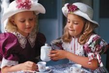 Tea party maroon